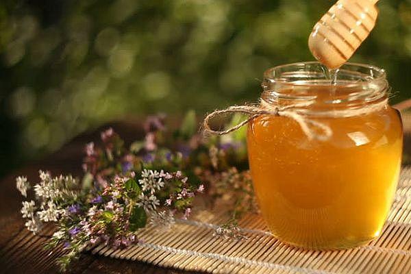 мед и травы против стрептококков